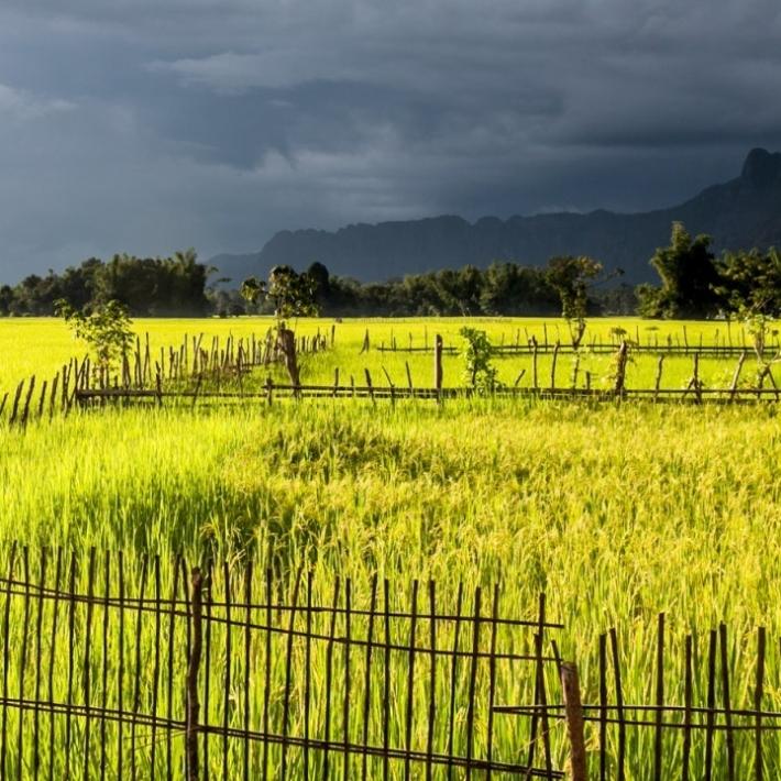 Tajlandia-Laos-Kambodża-wyprawa-TripTrip.pl