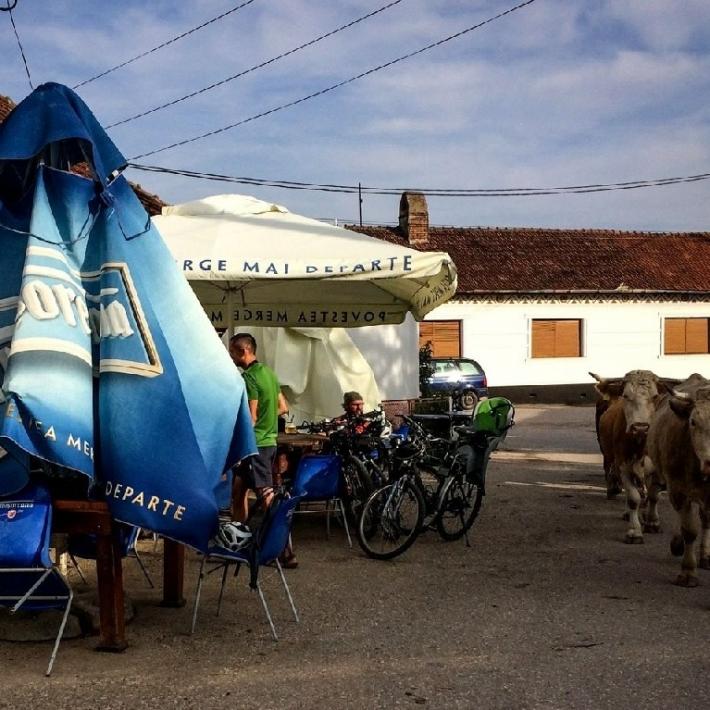 Rumuński-Banat-wycieczka-rowerowa-TripTrip.pl