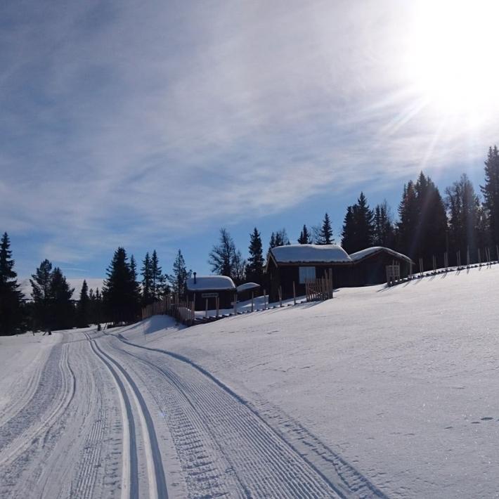 narty-biegowe-Norwegia-park-Rondane-TripTrip.pl-1